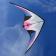 delta-wing-stunt-kite