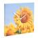 reloj-pared-flores-06