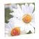 reloj-pared-flores-07