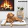 velika-ogrevana-pasja-posteljica-innovagoods-18w