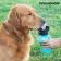 steklenica-za-pitje-za-pse-innovagoods