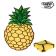 brisaca-za-na-plazo-ananas-adventure-goods%20(1)